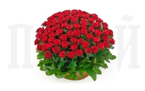Корзина из живых цветов «Бархатная роза»